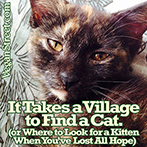 It Takes a Village to Find a Cat